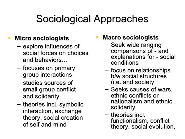 Image Result For Macro And Micro Sociology Sociology