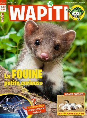 Wapiti -mai 2017 : Animal star : Elle fouine partout la fouine ! Les premiers jours de la vie - En mai, reconnais les orchidées- Mission science : Embarque à bord de la Station spatiale Belle planète : On combat les pesticides -