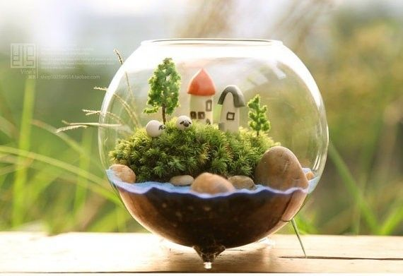 Aliexpress.comの から の中の熱い販売の直径10cmガラスの花瓶、 円形のガラスの花瓶、 金魚鉢、 ジューシーな手作りキットホステスの贈り物テラリウム家の装飾