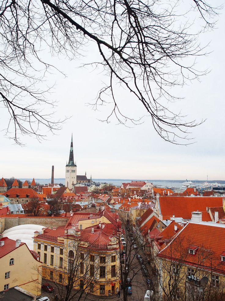 Amazing Places           - Tallinn - Estonia (bysquare(tea))