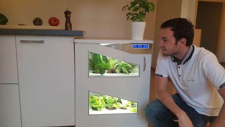Pousse-légume : 1er potager électroménager encastrable made in France.  https://www.fleursdubien.fr/pousse-legume-potager-electromenager/