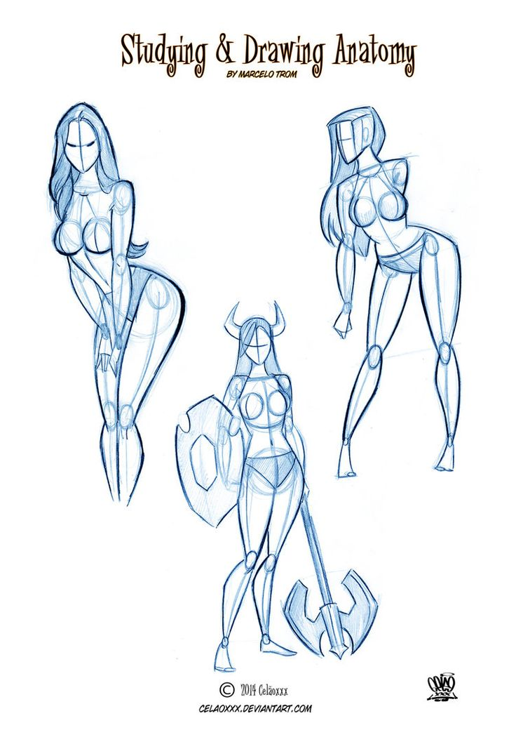 Studing anatomical of Pin Ups by celaoxxx