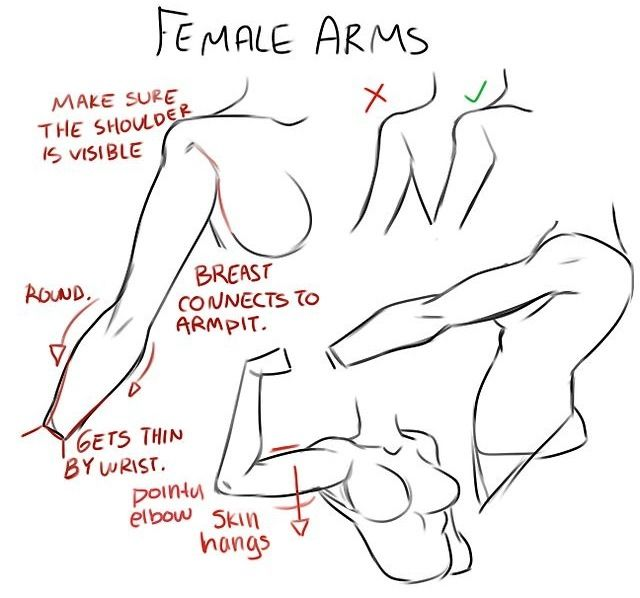 Female arms drawing tutorial                              …