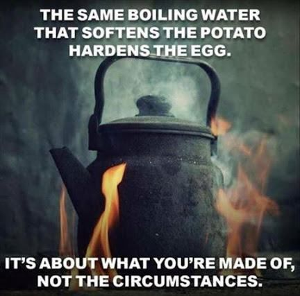 The same boiling water softens the potato and hardens the egg. What are you made of?