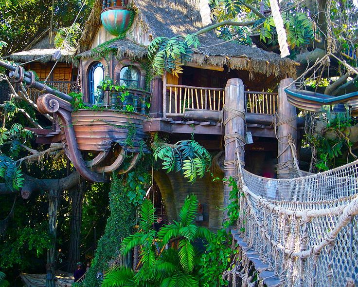 treehouse masters | Tarzan Treehouse Photograph by Karon Melillo DeVega - Tarzan Treehouse ...
