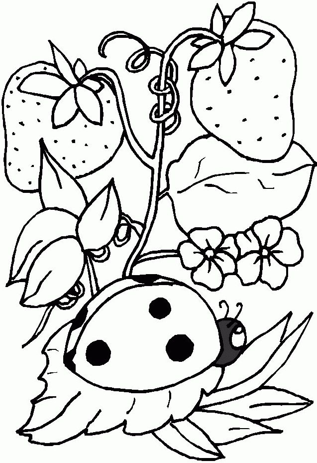 96 best Kleurplaten images on Pinterest Print coloring pages - fresh hello kitty ladybug coloring pages