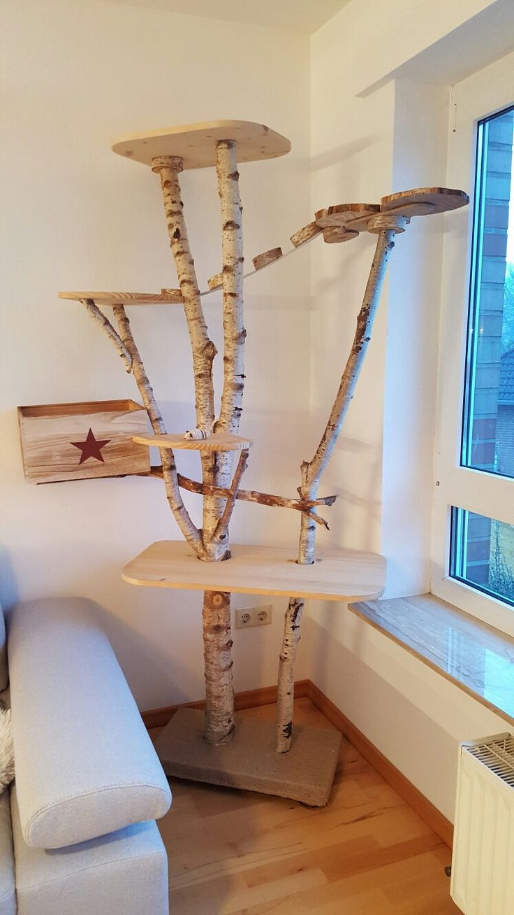 Scratching tree for cats from birch – Heimatruf – #aus #Birke # for #Heimatruf #Ka …   – Katzen