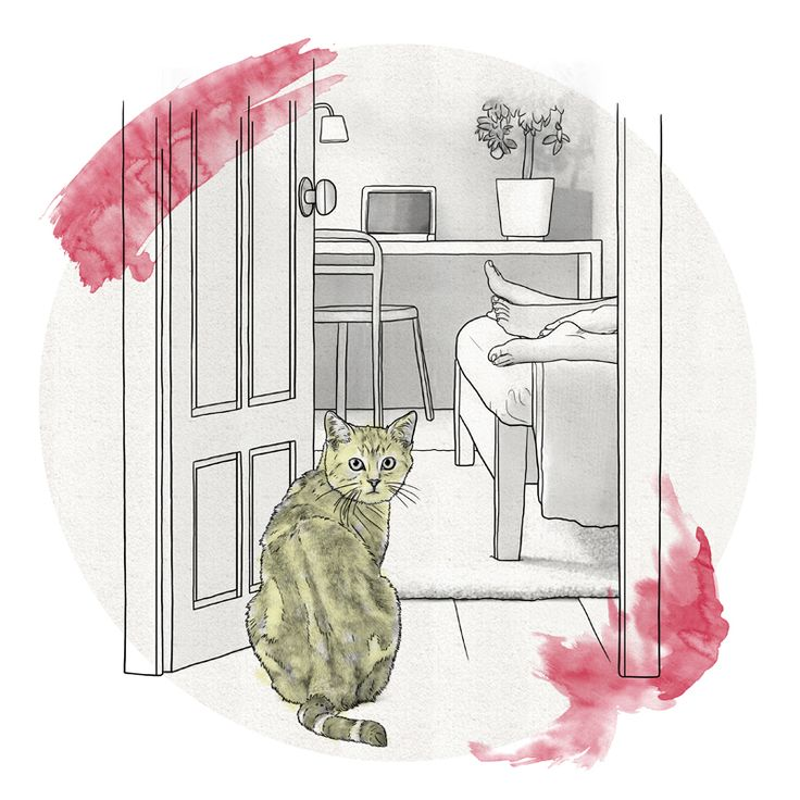 #fortunatodisco #newdivision #illustration #digital #pencil #line #textured #cat