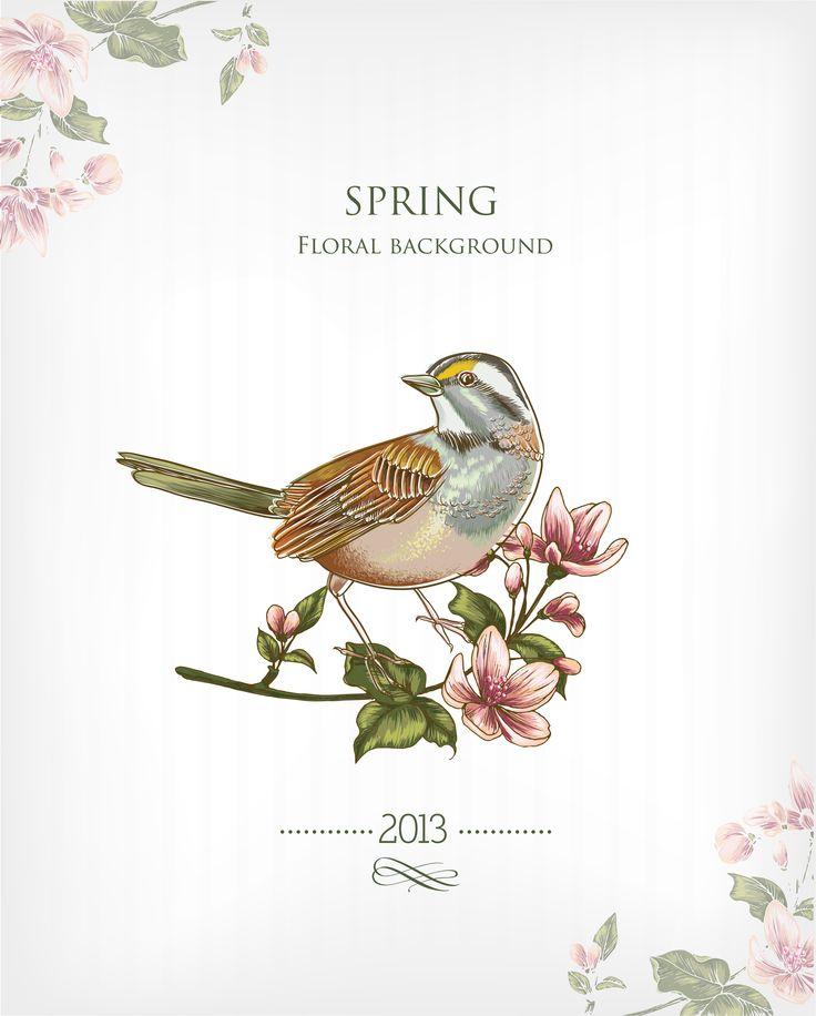 Best 25 Flower Desktop Wallpaper Ideas On Pinterest: 17 Best Ideas About Floral Backgrounds On Pinterest