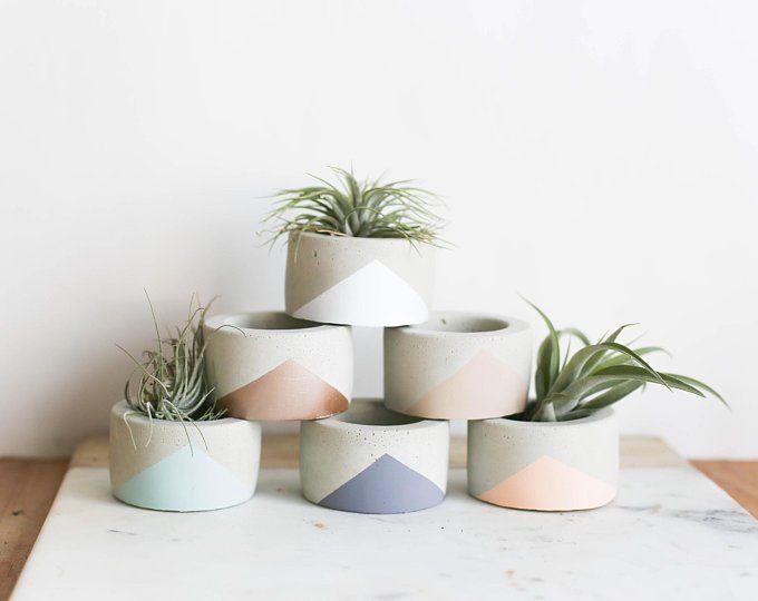 Vase Pour Plante Grasse Petite Jardiniere Minimaliste Etsy