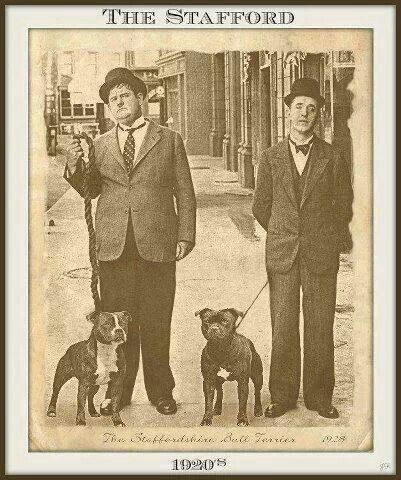 laurel and hardy in the 21st This lost episode is named the best of the 21st  laurel and hardy biopic  englishman stan laurel and the us-born oliver hardy rose to fame in the late.