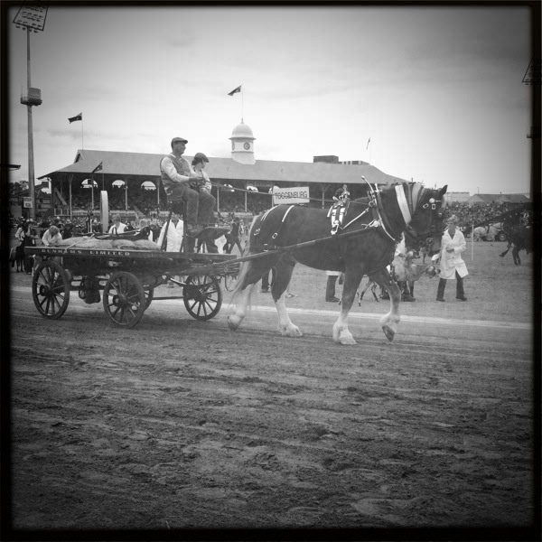 Grand Parade Ekka Show Day 2011