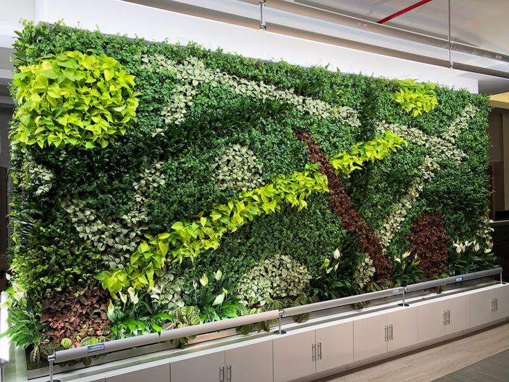 Geometric Vertical Garden in a medical office in Ridgewood, Queens.