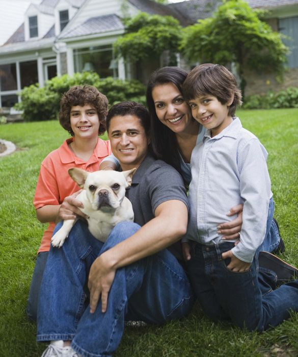 Top 10 Family-Friendly Dogs- love Frenchies!