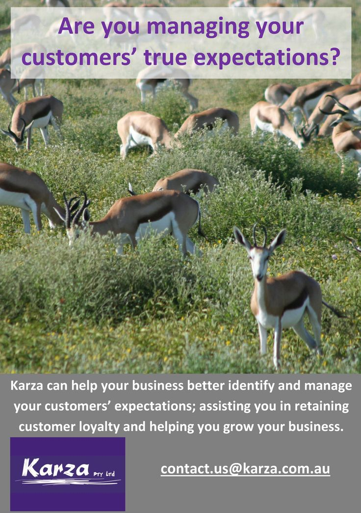 Karza can help your business better identify and manage your customers' expectations; assisting you in retaining customer loyalty and helping you grow your business.