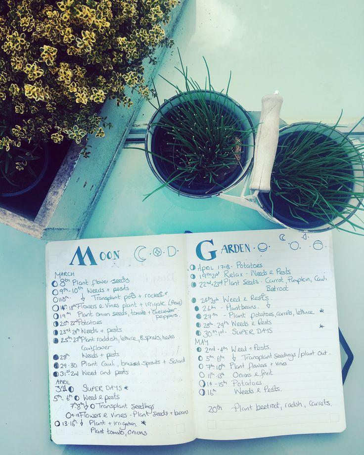 Moon Garden plan www. Theresawolfatmydoor.com