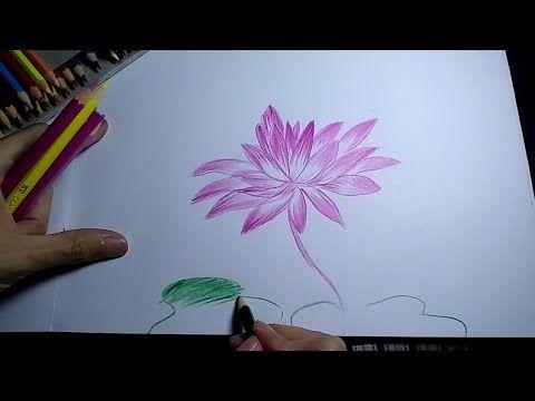 Paling Hits 30 Gambar Bunga Teratai 3 Dimensi Menggambar Bunga Teratai Download 16 Contoh Gambar Sketsa Bunga Bunga Teratai Menggambar Bunga Gambar Bunga
