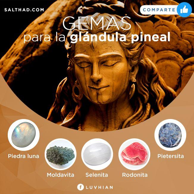 Gemas para la glandula pineal  #glandulapineal #piedraluna #rodonita #selenita #pietersita #gemas #piedras #sanacion #talisman #cuarzos #cristales
