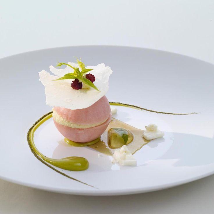 "1,100 Likes, 6 Comments - chefsplateform@gmail.com (@chefsplateform) on Instagram: ""iced macaron of rhubarb with verveine & crispy joghurt. By @thomasbuehner via @PhotoAroundApp. Use…"""