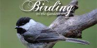 Birding in the Gardens Littleton, Colorado + butterfly pavillion in Westminster, CO