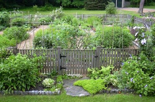 34 best images about fence landscaping ideas on pinterest