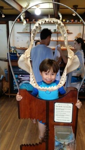 Pedro e os dentes de Tubarão...