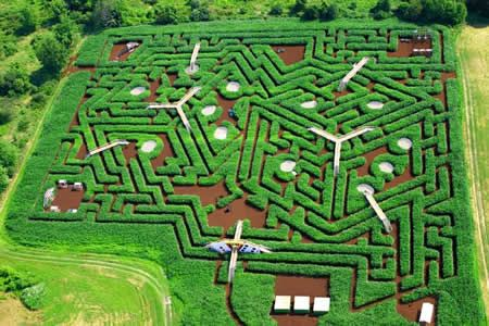 Davis' Mega Maze (USA)- The Davis Farmland Mega Maze is unique in that it changes completely from year to year! Whether it's a king's crown, a dinosaur or a city skyline, visitors never know what they'll be navigating next.