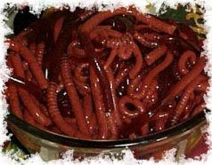 jello worms... gross. kids would love it!