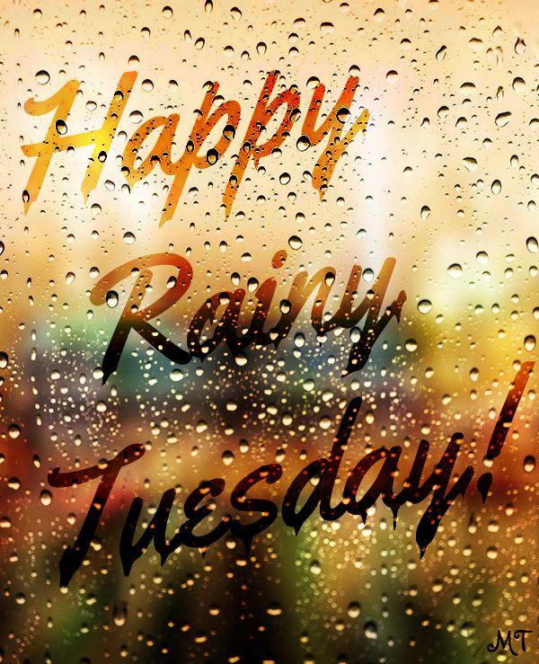 Good morning my beautiful girls. Looks like another rainy day  :)