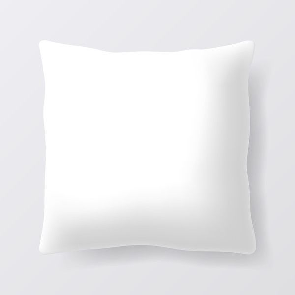 1 Qty: €Hypoallergenic Goose Down Pillow Inserts,10/90: 10% Down To 90% Feather,