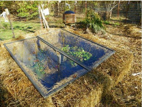 So you want to build a cold frame - well the plans don't come much easier than this one... - Dan