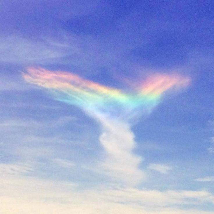 虹の翼。- ファイアー・レインボー 「直訳すれば『炎の虹』だが、火とは無関係で、大気中の氷の結晶(氷晶)により太陽光が屈折することで生じる大気光学現象だ。この現象は正式には『環水平アーク』と呼ばれ、太陽光が巻雲の中を通るときに生じる。巻雲は高いところにできる薄いすじ状の雲で、六角板状の氷晶からできている」