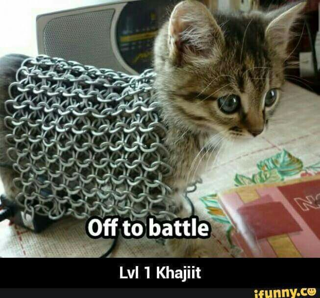 Khajiit is ready for adventure.