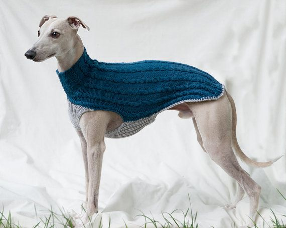 Cable Sweater for Italian Greyhounds & Whippets Cable, Wool and Cable s...