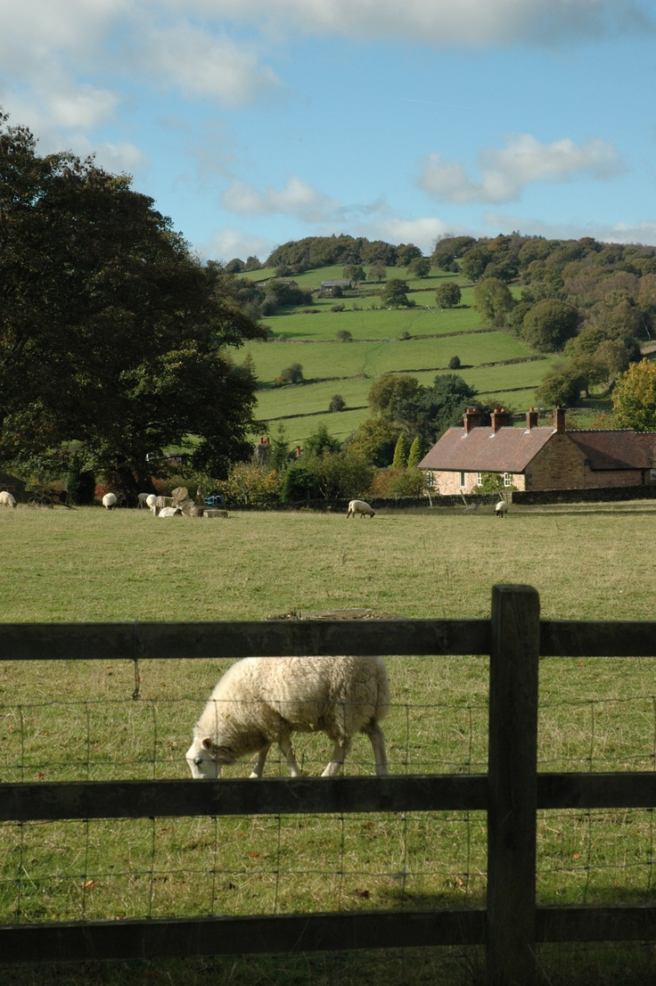 The Derbyshire Countryside