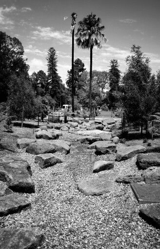 Week 5 - Black and white landscape. Fitzroy Gardens near Captain Cook's Cottage.