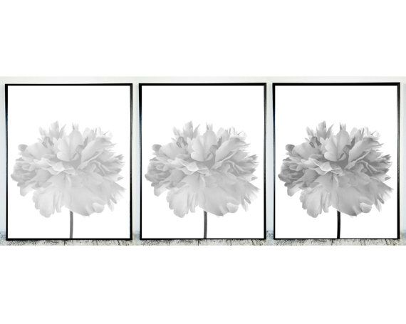Set of 3 black and white prints black white 3 prints black white