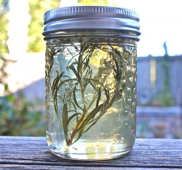 White Wine and Herb Jelly:  perfect solution for leftover wine.  Serve with crackers and cheese.