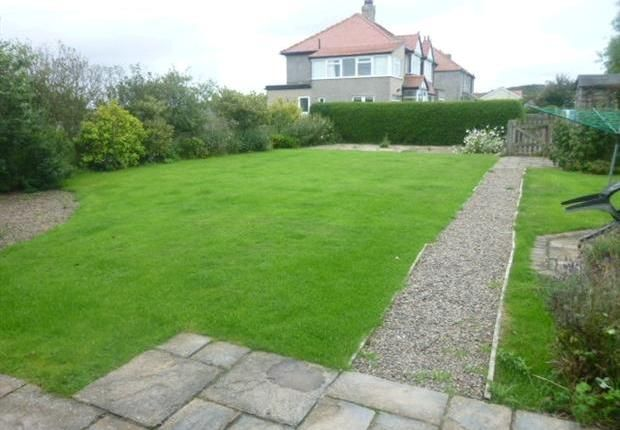 3 bedroom terraced house to rent in Armstrong Cottages, Bamburgh NE69 - 30521538