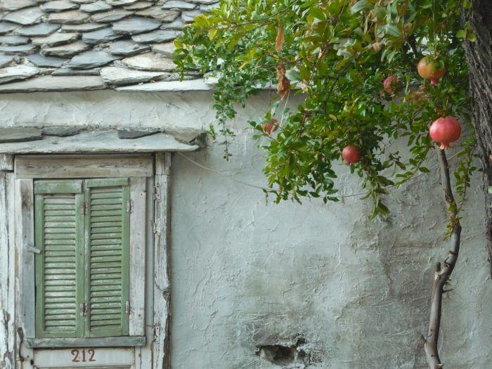Pomegranate tree in Chora