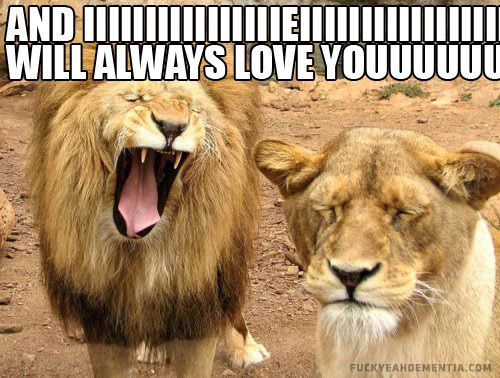 Funny I Love You Meme For Her : Best meme images ha ha so funny and funny stuff