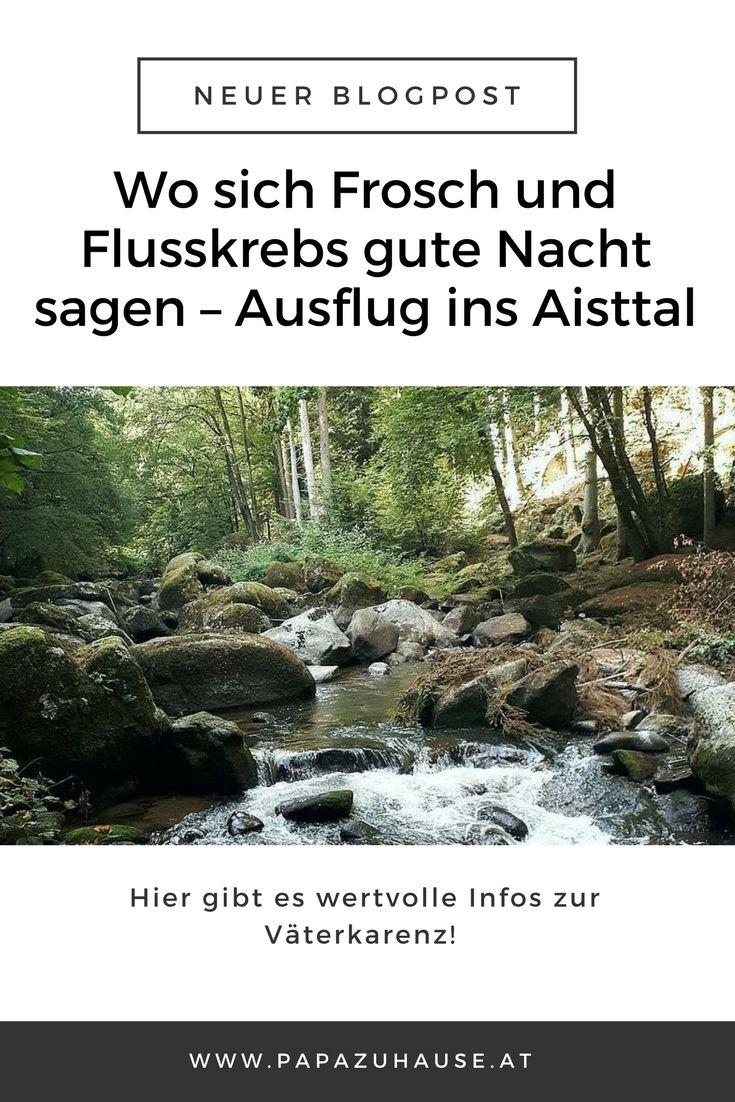 Im Sommer 2017 haben wir ein kleines Naturjuwel entdeckt - das Aisttal. Ein herrlicher kleiner Ausflug war das. Jede Menge Frösche und Flusskrebse inklusive!  #ausflug #familienausflug #ausflugsziel #oberösterreich #wartberg #aist #aisttal #flusskrebs #frosch