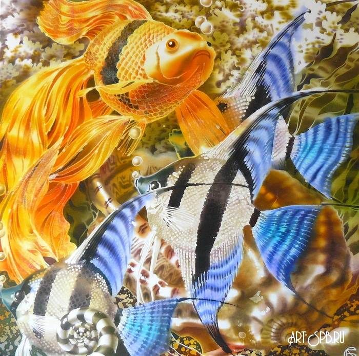 Скалярии и золотая рыбка