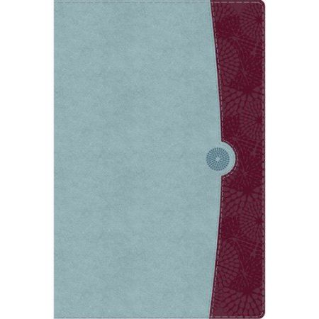 The Study Bible for Women: Holman Christian Standard Bible Sky Blue & Deep Red Leathertouch