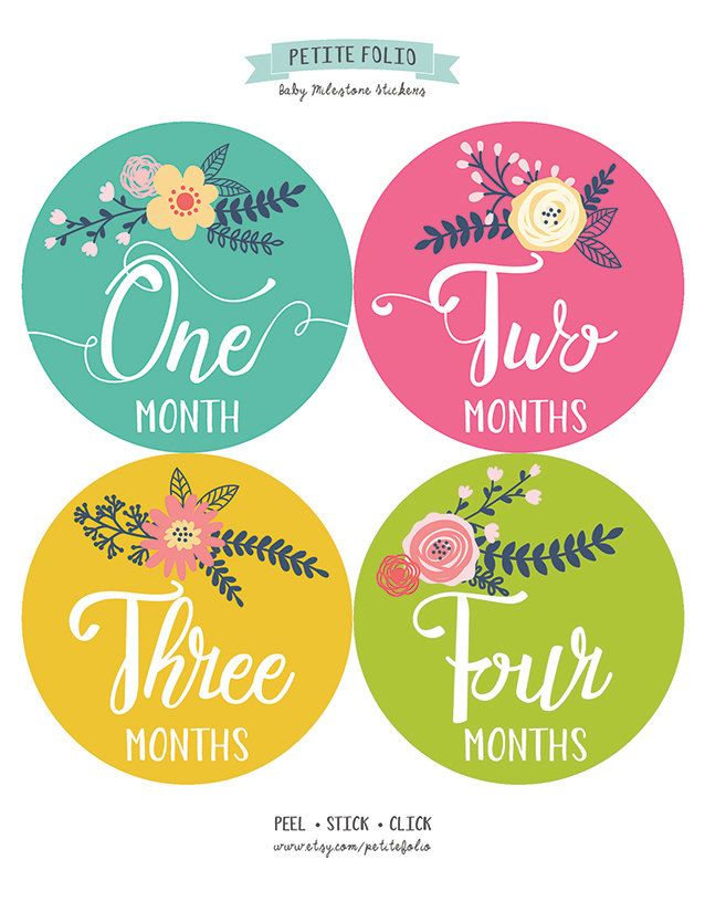Monthly Baby Sticker Girl, Baby Month Sticker, Floral, Milestone Sticker, Month by Month Baby Sticker, Baby Gift, Baby Girl, Petite Folio by PetiteFolio on Etsy https://www.etsy.com/listing/237381841/monthly-baby-sticker-girl-baby-month