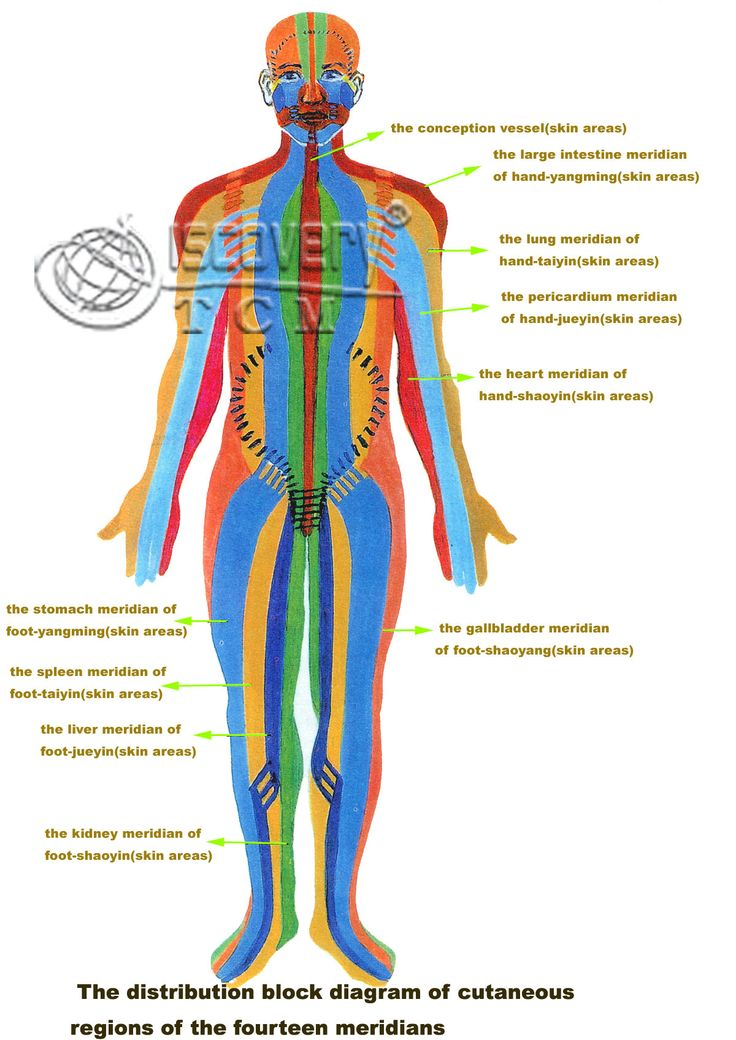 body meridians sex organs squirted desire