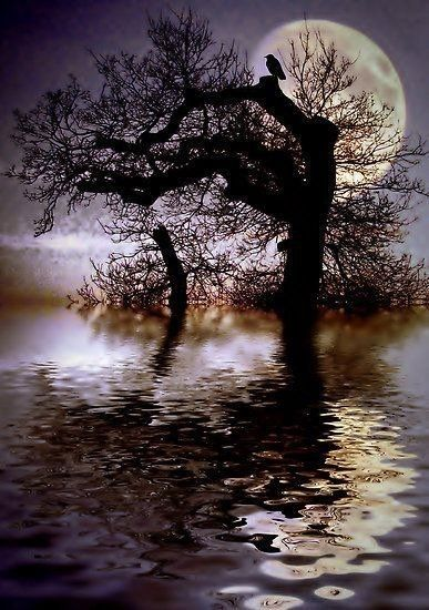 Mångata - the Swedish word for moon road, a trail of shimmering moonlight across water