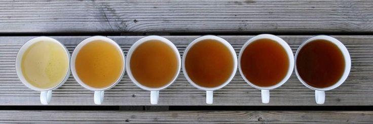 Een lekker kopje versethee op z'n tijd is niet verkeerd. Vooral als die thee je gezondheid ten goede komt omdat het bomvol goede ingrediënten zit die je immuunsysteem een flinkeboost