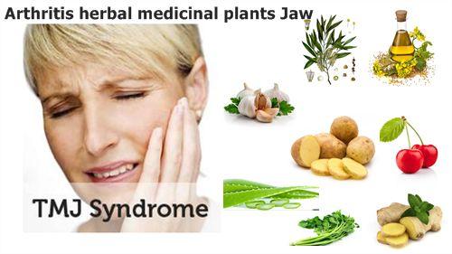 http://www.pastiherbal.com/tanaman-obat-herbal-radang-sendi-rahang/