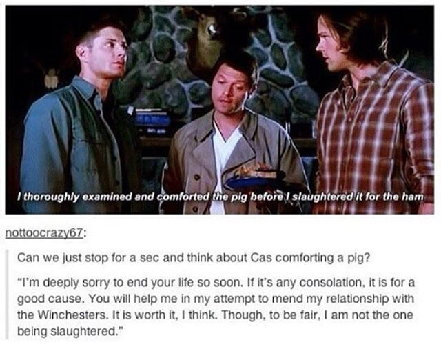 Don't pretend you didn't read that last bit in Cas' voice